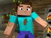 Steve Minecraft