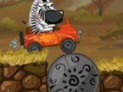 Zebra in Safari