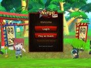 Ninja PvP Oua mistice