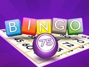 Bingo 75 numere