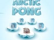 Arctic Ping Pong