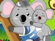 Ursi Koala de imbracat