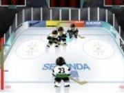 Hockey pe gheata