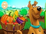 Scooby Doo: Doo la Ferma Frenzy