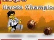 Karate cu oameni Lego