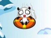 Concurs cu Panda pe zapada
