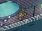Scooby Doo și Shaggy pe nava piratilor