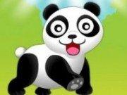 Panda mananca bambus