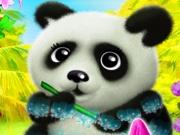 Ingrijeste Ursul Panda