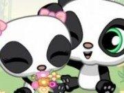 Pui de ursi Panda indragostiti