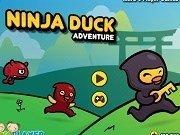 Rata Ninja in aventura
