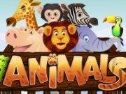 Animale pierdute la Zoo