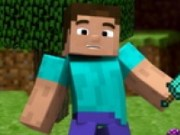 Steve Minecraft etapa de constructie