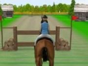 Sarituri cu calul peste obstacole 2