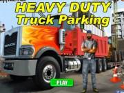 Camioane de marfa Heavy Duty
