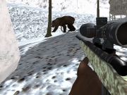 Club Vanatoare de ursi