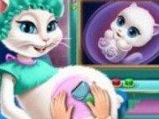 Pisicuta Angela insarcinata