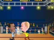 Box in ring cu Obama vc McCain
