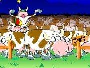 Vaci nebune