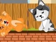 Hraneste pisicile cu peste