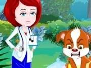 Medic veterinar de gardă