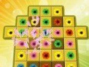 Match 3 imagini cu flori