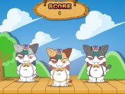 3 Pisici dansatoare