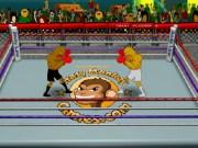 Campionat Box in ring