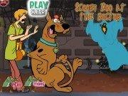 Scooby Doo Accident