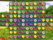 Match 3 cu flori