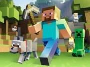 Minecraft Online 3D