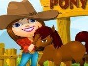 Administreaza ferma poneilor