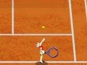 Tenis de camp Turneu