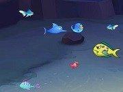 Fish Eat Fish!